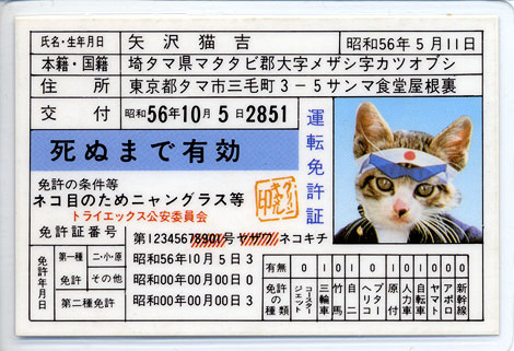 b7b90322.jpg