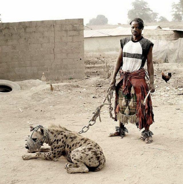 アフリカ版のポケモンはすべてレベル1で「かみつく」を取得済みwwwwww